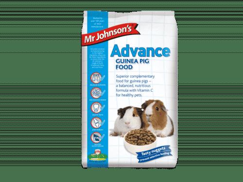 Mr. Johnson's Advance GUINEA PIG-904x1024