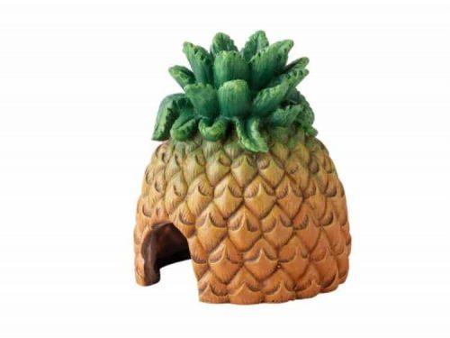 Ananas hule