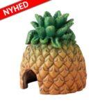 Ananas hule Facebook