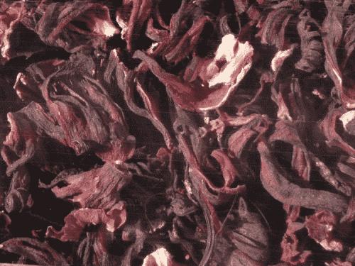 Hugro Hibiscusblomster selve blomst