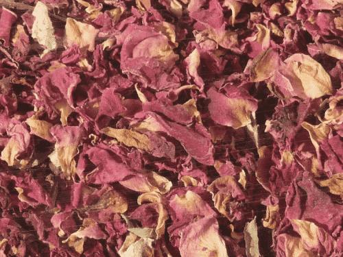Hugro Røde Rosenblomster selve bladene