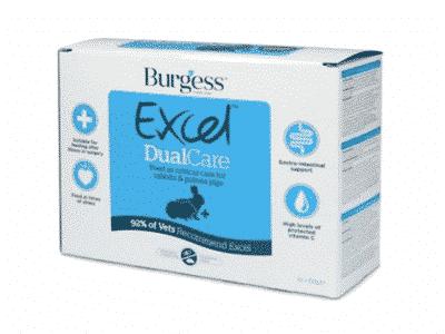 Burgess DualCare