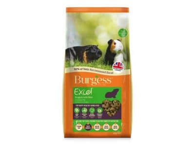 Burgess Excel Marsvin Nuggets med mint 10 kg