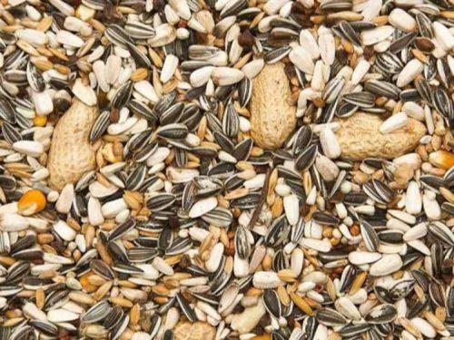 Papegøje Foder Mix med nødder 15 Kg 1